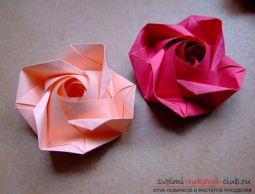 второго ряда розы.