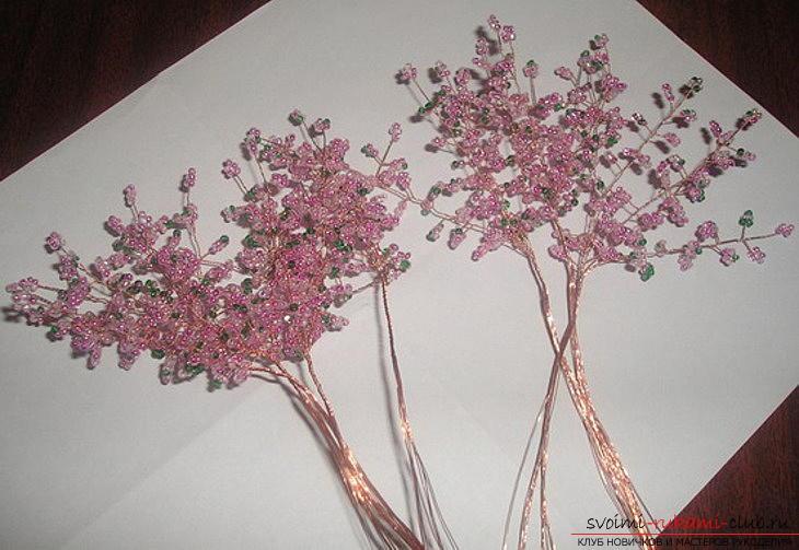 Деревья из бисера своими руками схема