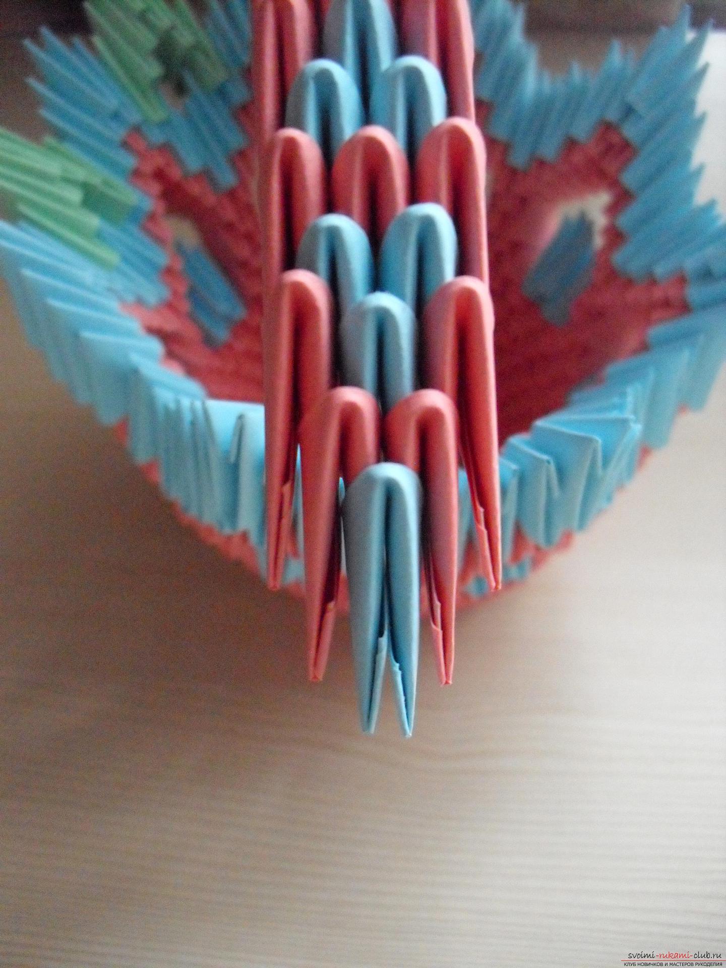 Модульное оригами павлины схема пошаговой сборки