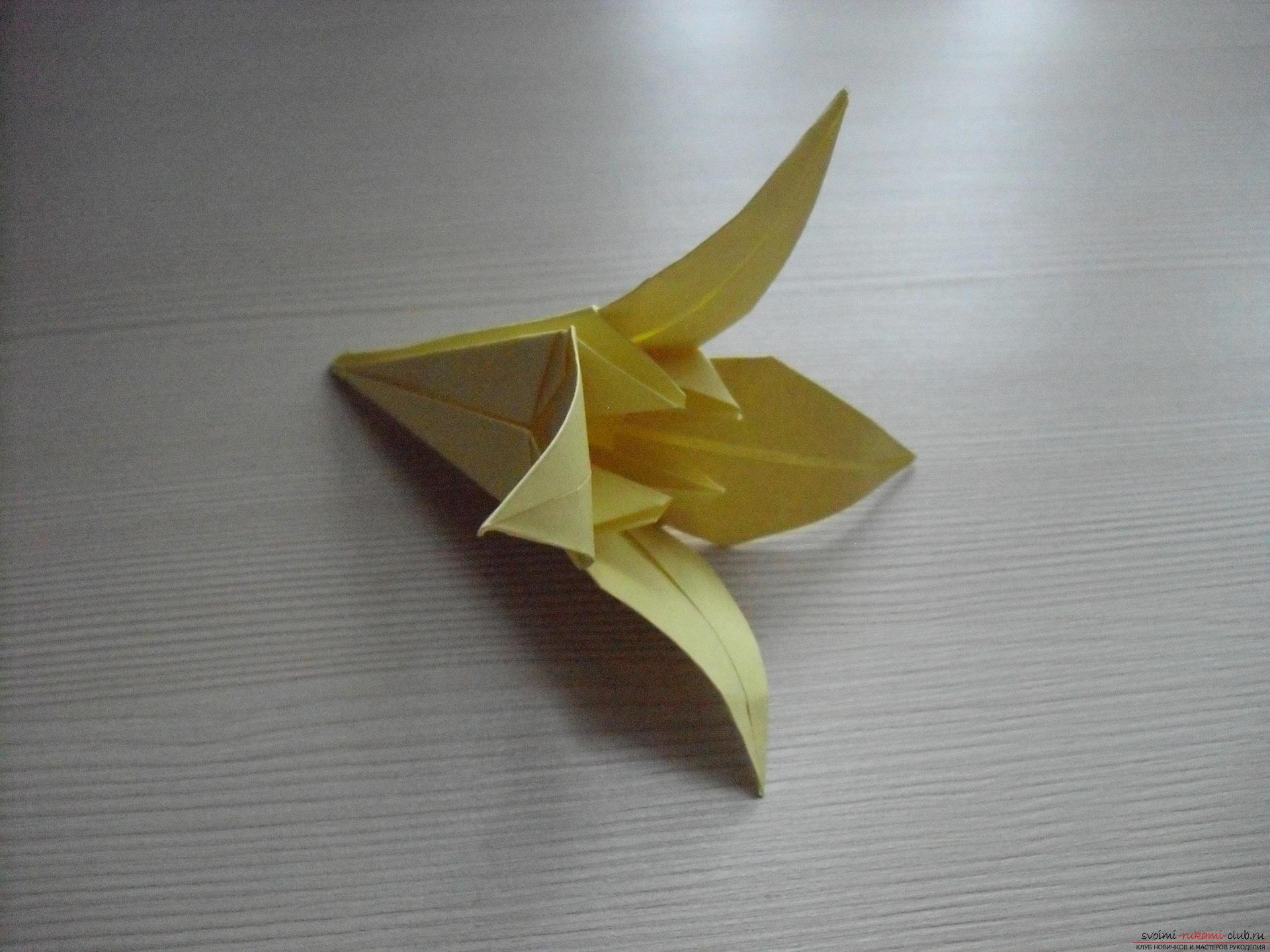 Этот пошаговый мастер-класс с инструкцией модульного оригами научит как сделать корзинку с лилиями.. Фото №38