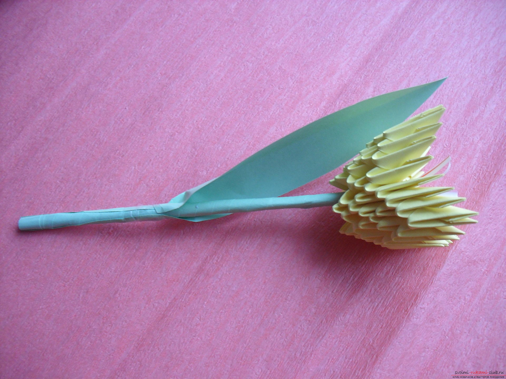 Этот мастер-класс научит как сделать вазу с тюльпанами из бумаги в технике модульного оригами.. Фото №23