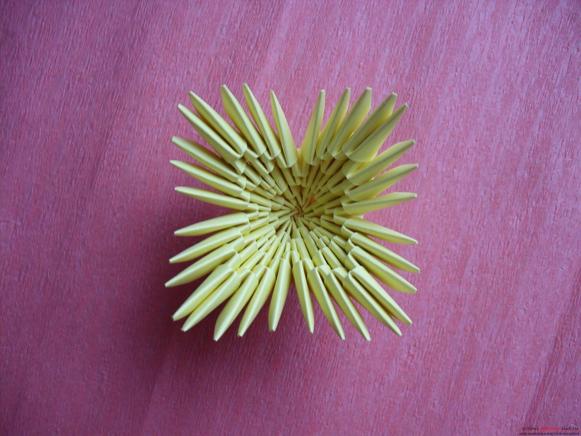 Этот мастер-класс научит как сделать вазу с тюльпанами из бумаги в технике модульного оригами.. Фото №20