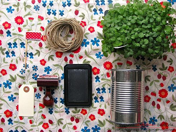 Подарочные пряные травы в горшочках для гостей