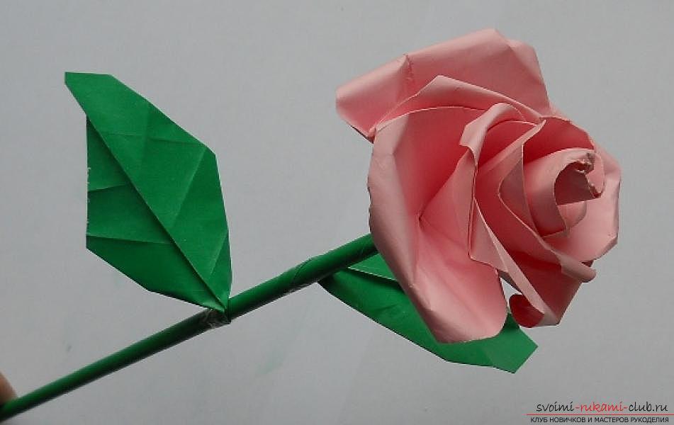 Бумажная роза в технике оригами. Фото №1