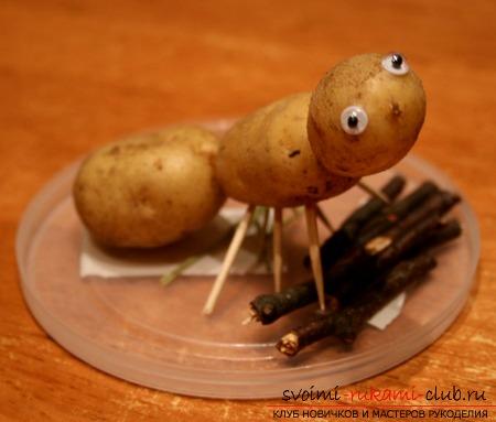 Как сделать поделки из картофеля своими руками. Фото №1