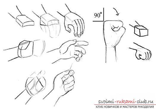 Поэтапное рисование руки