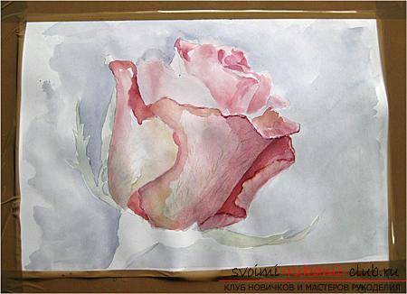 Поэтапное рисование акварелью розы. Фото №4
