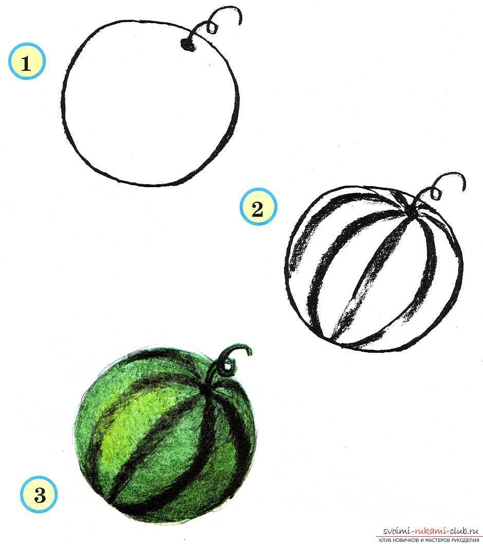 Традиционное рисование овощей и фруктов в старшей группе. Фото №1