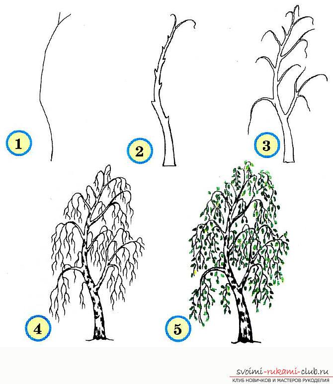 Рисование дерева поэтапно для начинающих. Фото №5