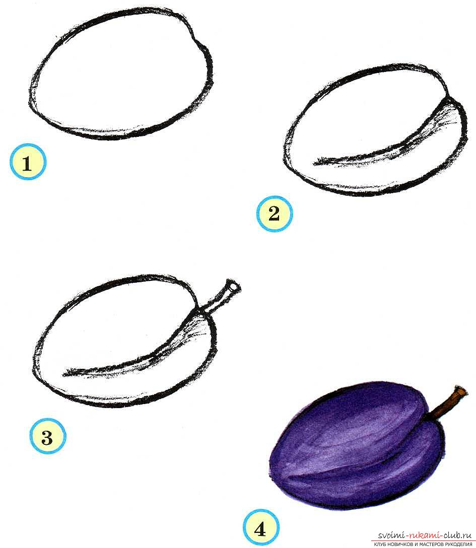 Традиционное рисование овощей и фруктов в старшей группе. Фото №6