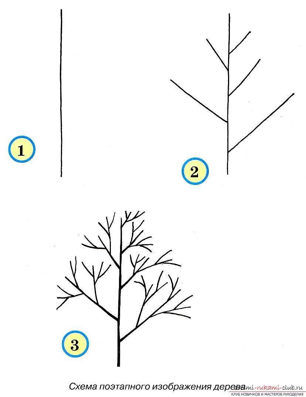 Рисование дерева поэтапно для начинающих. Фото №1