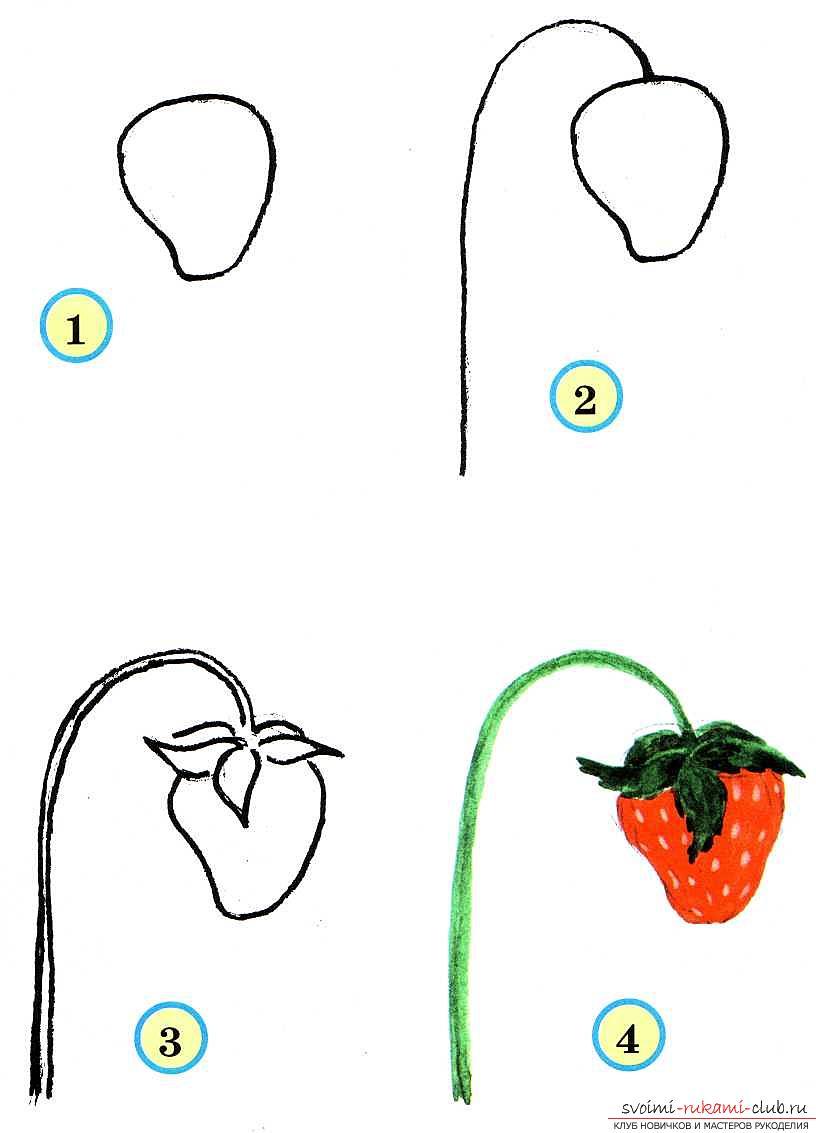 Традиционное рисование овощей и фруктов в старшей группе. Фото №4