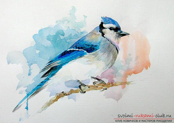 Поэтапное рисование акварелью птички не вызовет у вас затруднений, если следовать инструкциям