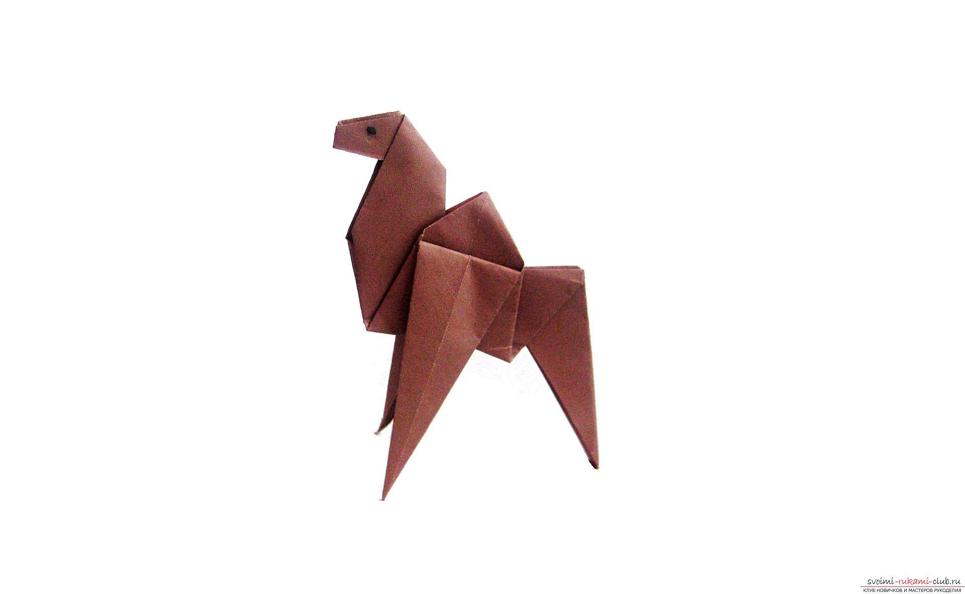 драконы по оригами инструкция видеоурок
