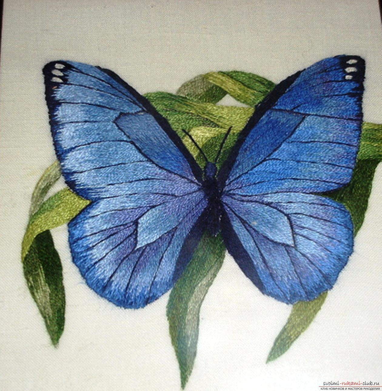 Схемы вышивки гладью бабочки. Фото №1