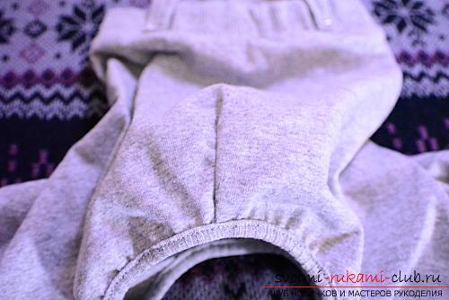 Выкройка штанишек и кофточки для той-терьера. Фото №4