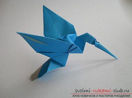 художественность птицы,