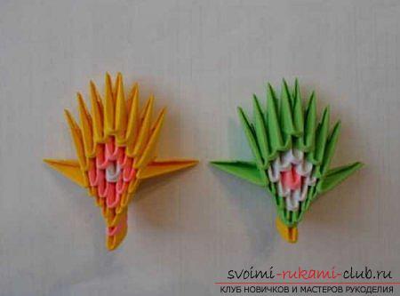 Оригами павлина своими руками: схема и описание.</p> </div> <p> Фото №7″ width=»700″ height=»500″/> </p> <div style=