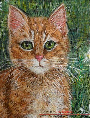 красивого рыжего кота.
