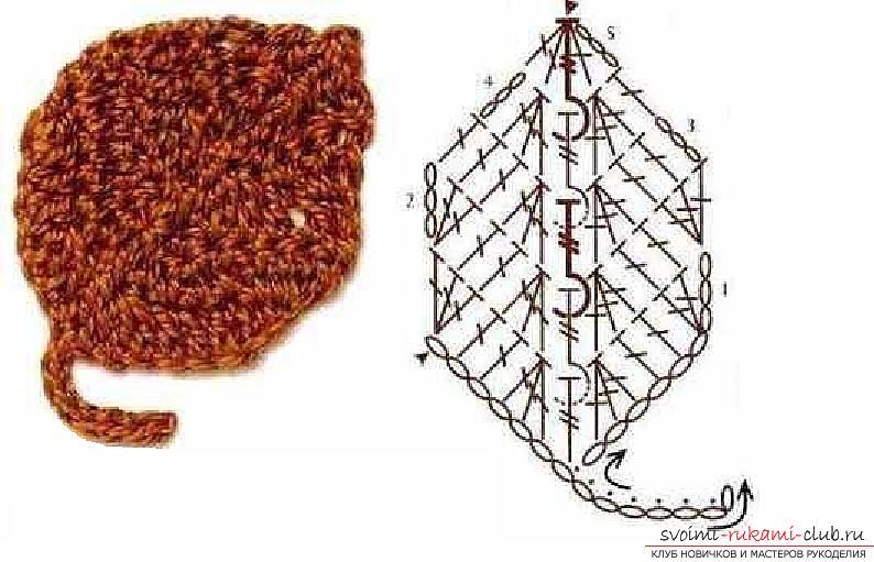 Схемы и подробное описание как связать крючком листья разных форматов.. Фото №2