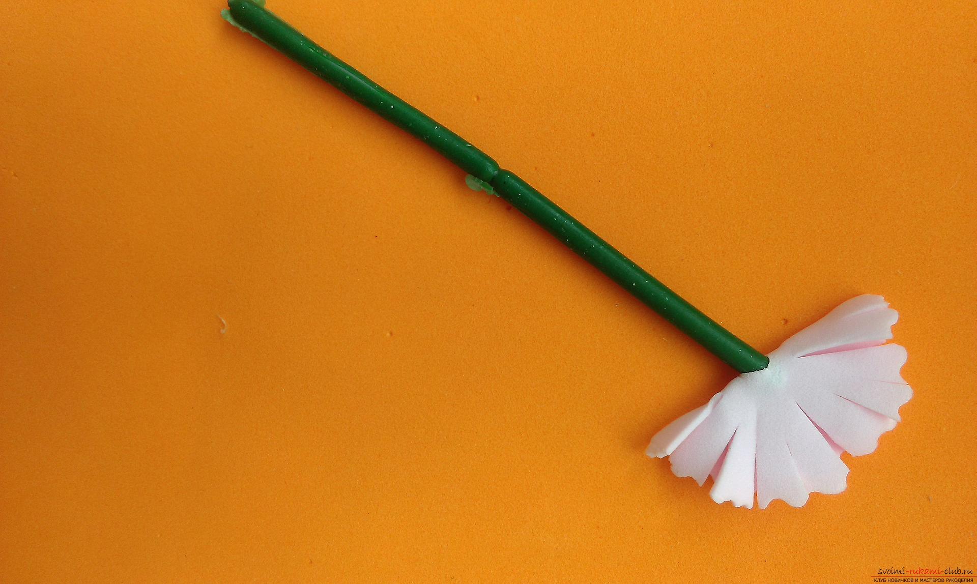 Этот мастер-класс расскажет как сделать брошь из георгиевской ленты с гвоздикой из фоамирана.. Фото №28