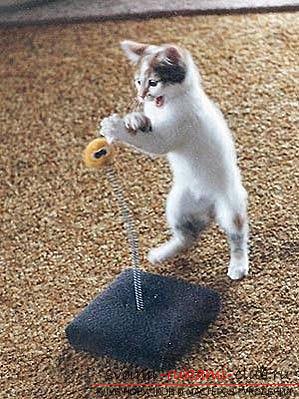 Сделать игрушки для котенка своими руками