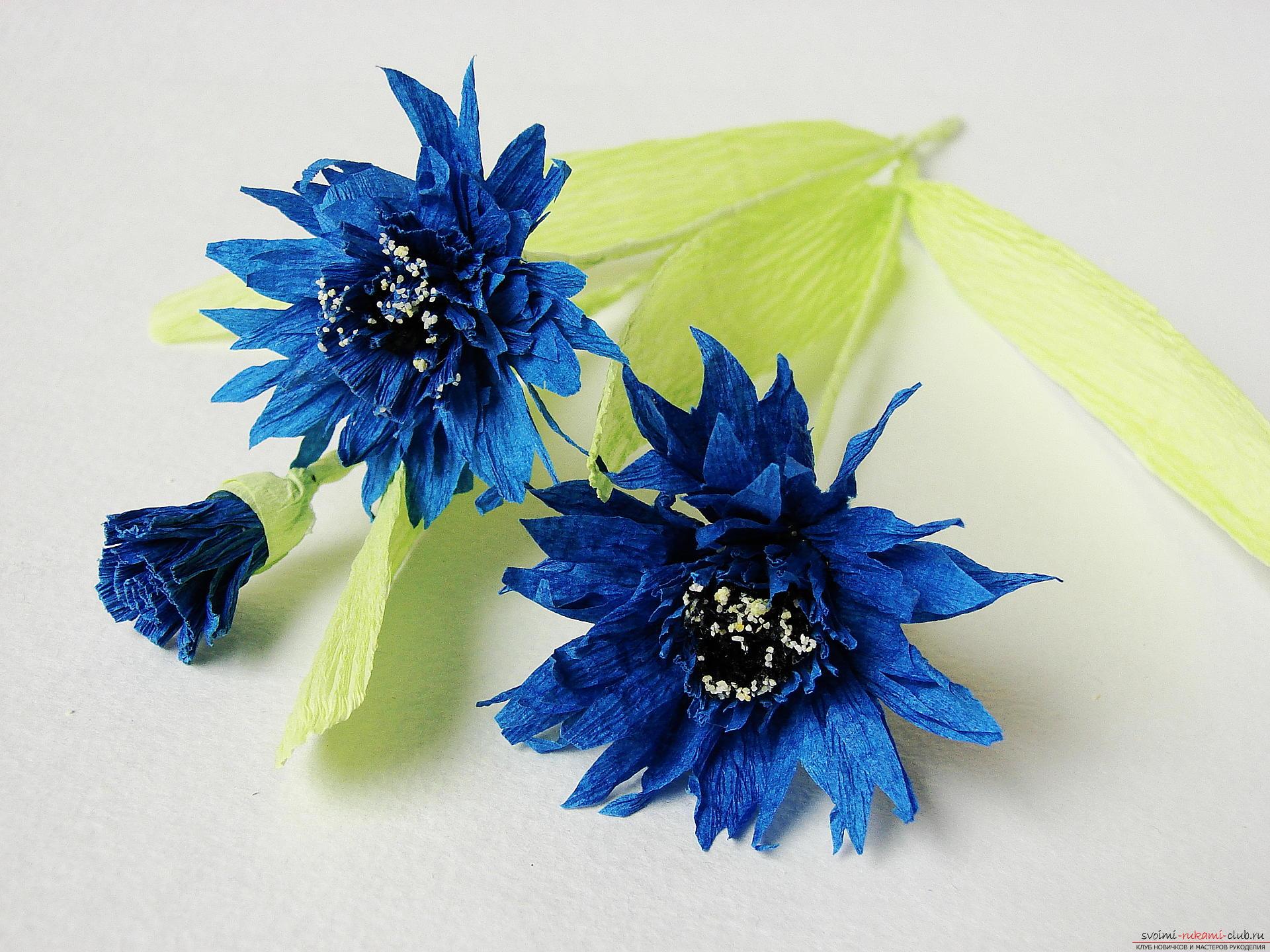 Смастерим васильки своими руками. Наш мастер-класс с фото подробно описывает как создать эти цветы из гофрированной бумаги.. Фото №30
