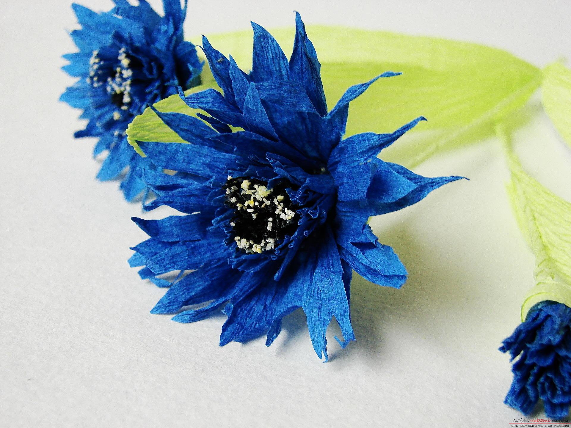 Смастерим васильки своими руками. Наш мастер-класс с фото подробно описывает как создать эти цветы из гофрированной бумаги.. Фото №32