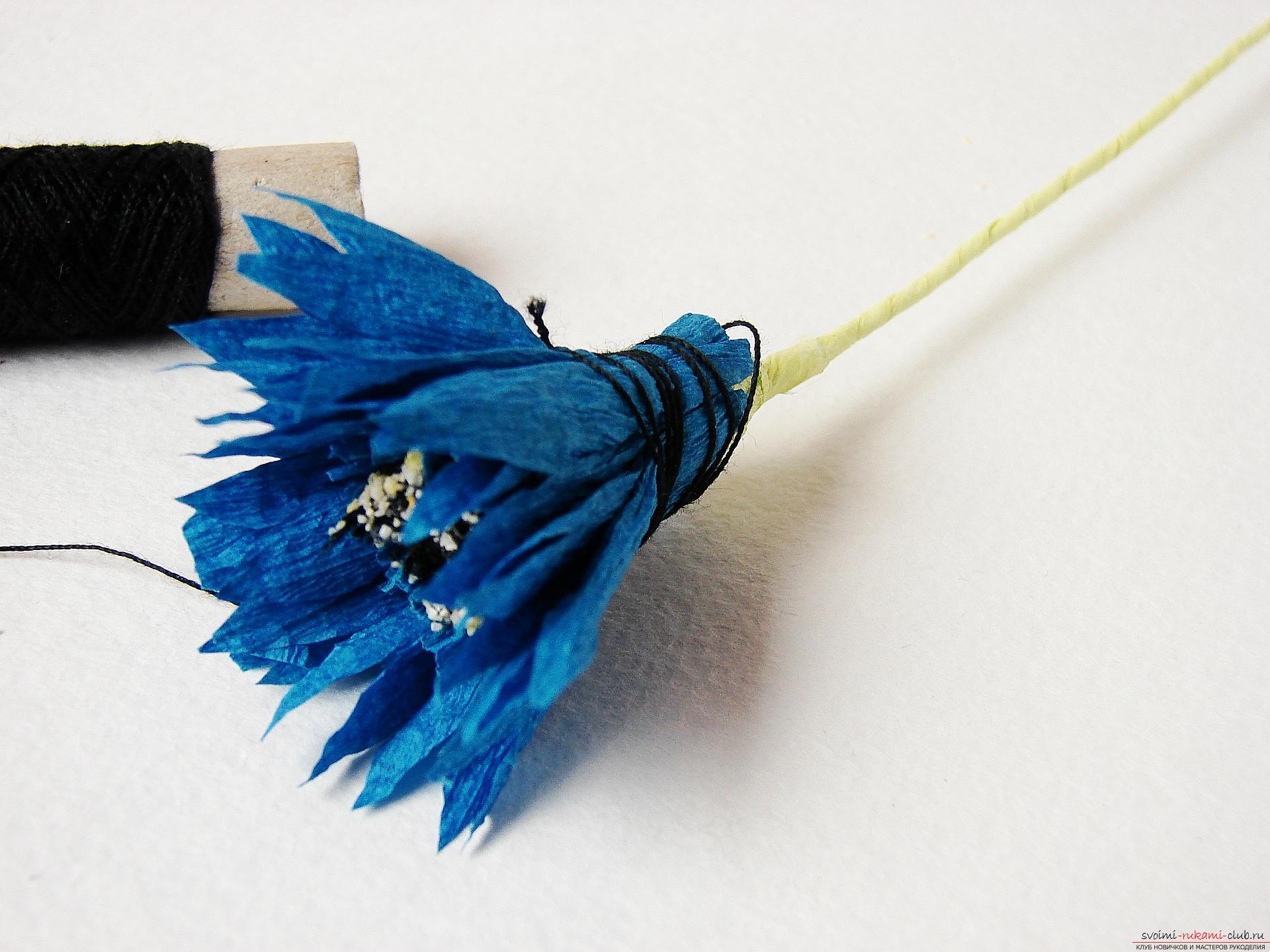 Смастерим васильки своими руками. Наш мастер-класс с фото подробно описывает как создать эти цветы из гофрированной бумаги.. Фото №24