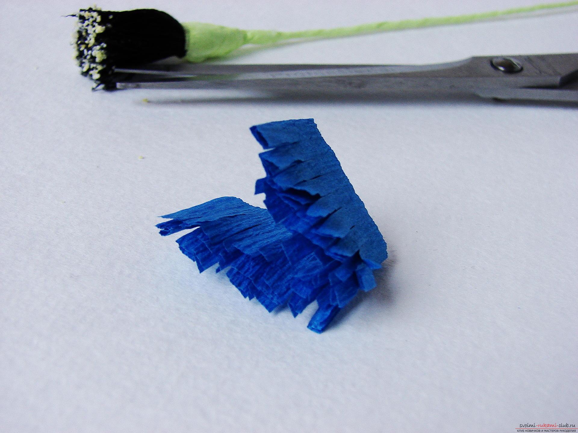 Смастерим васильки своими руками. Наш мастер-класс с фото подробно описывает как создать эти цветы из гофрированной бумаги.. Фото №13