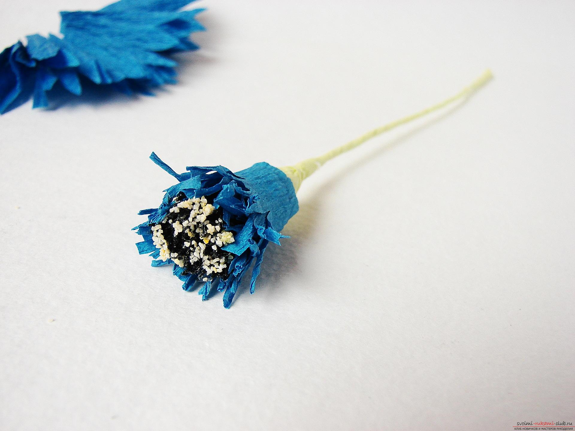 Смастерим васильки своими руками. Наш мастер-класс с фото подробно описывает как создать эти цветы из гофрированной бумаги.. Фото №20
