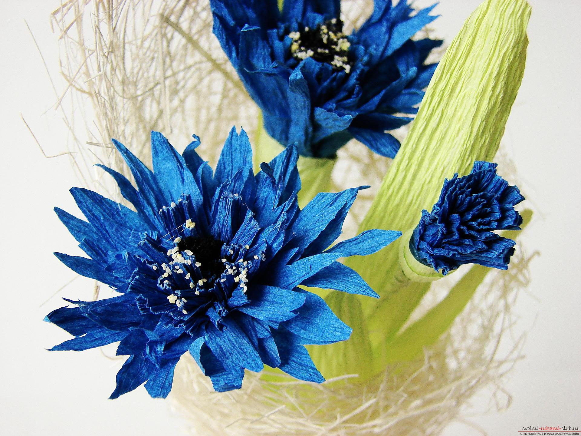 Смастерим васильки своими руками. Наш мастер-класс с фото подробно описывает как создать эти цветы из гофрированной бумаги.. Фото №34