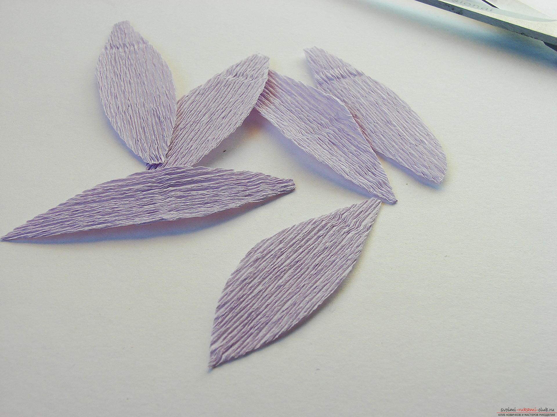 Мастер-класс научит как сделать гофрированные цветы своими руками – лилии из гофрированной бумаги.. Фото №5