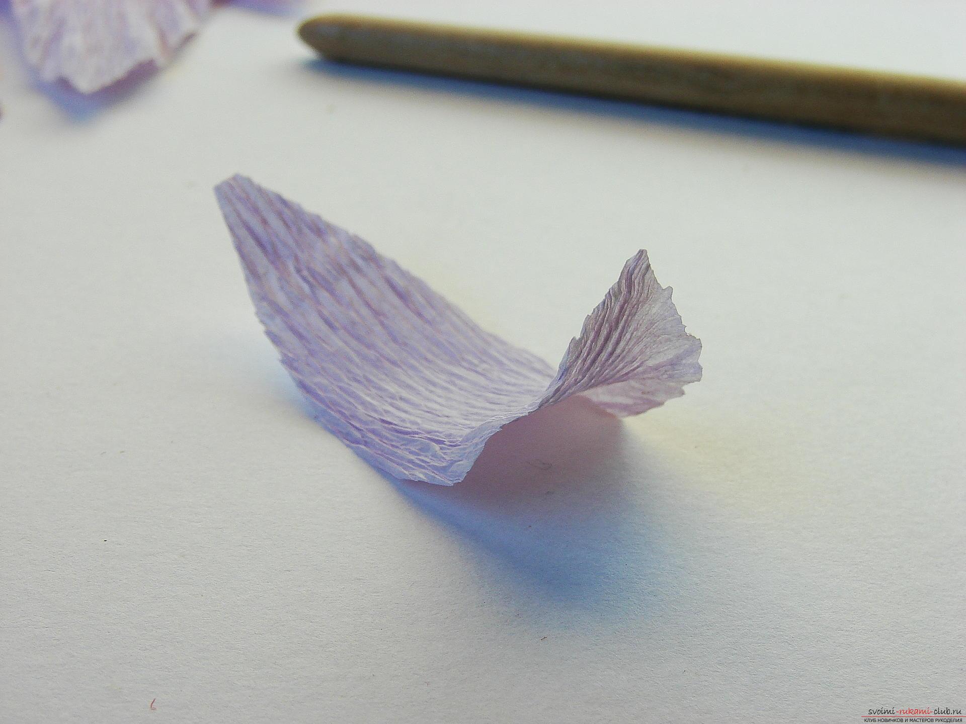 Мастер-класс научит как сделать гофрированные цветы своими руками – лилии из гофрированной бумаги.. Фото №7