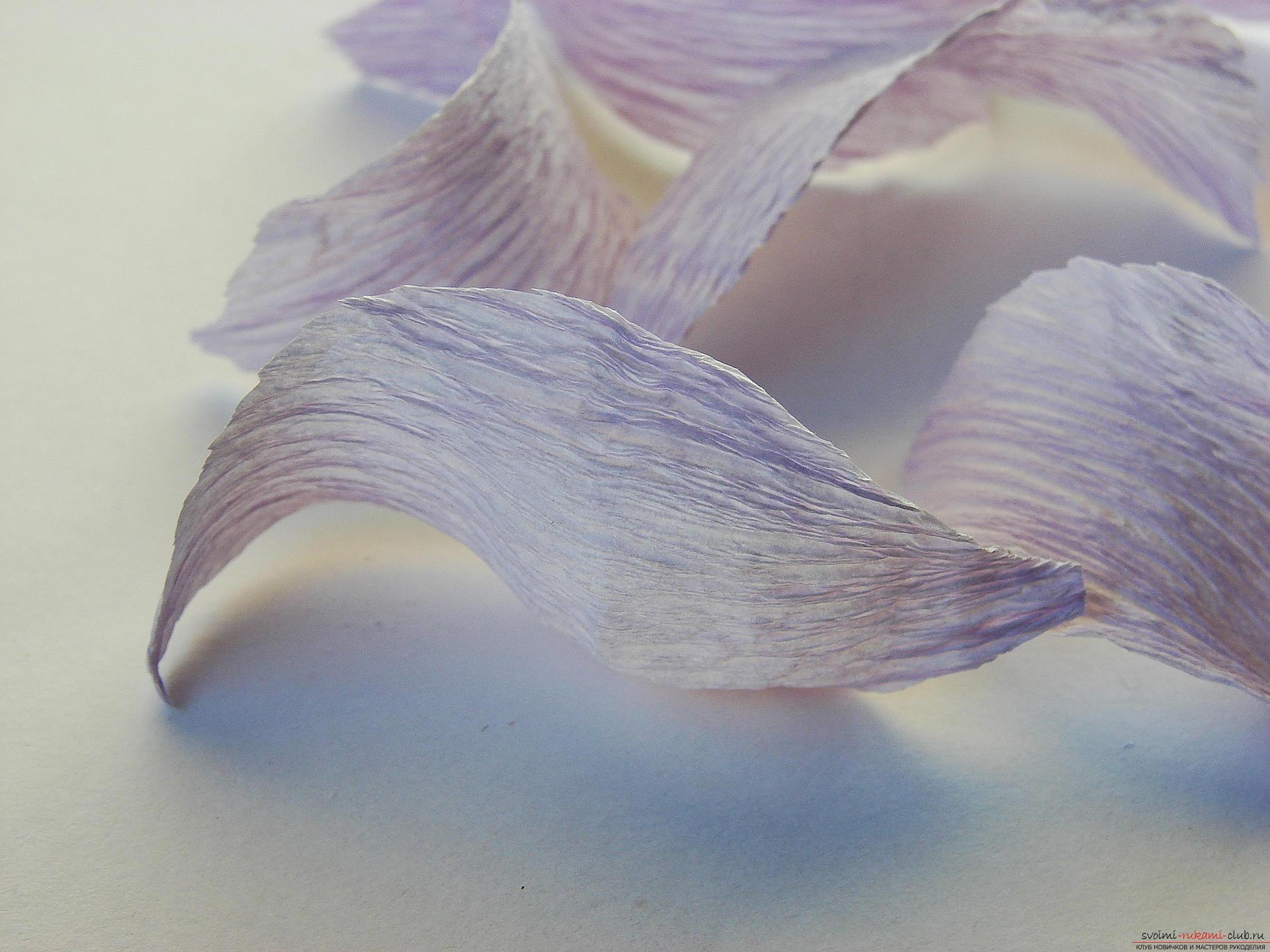 Лилии из бумаги своими руками скрапбукинг 46