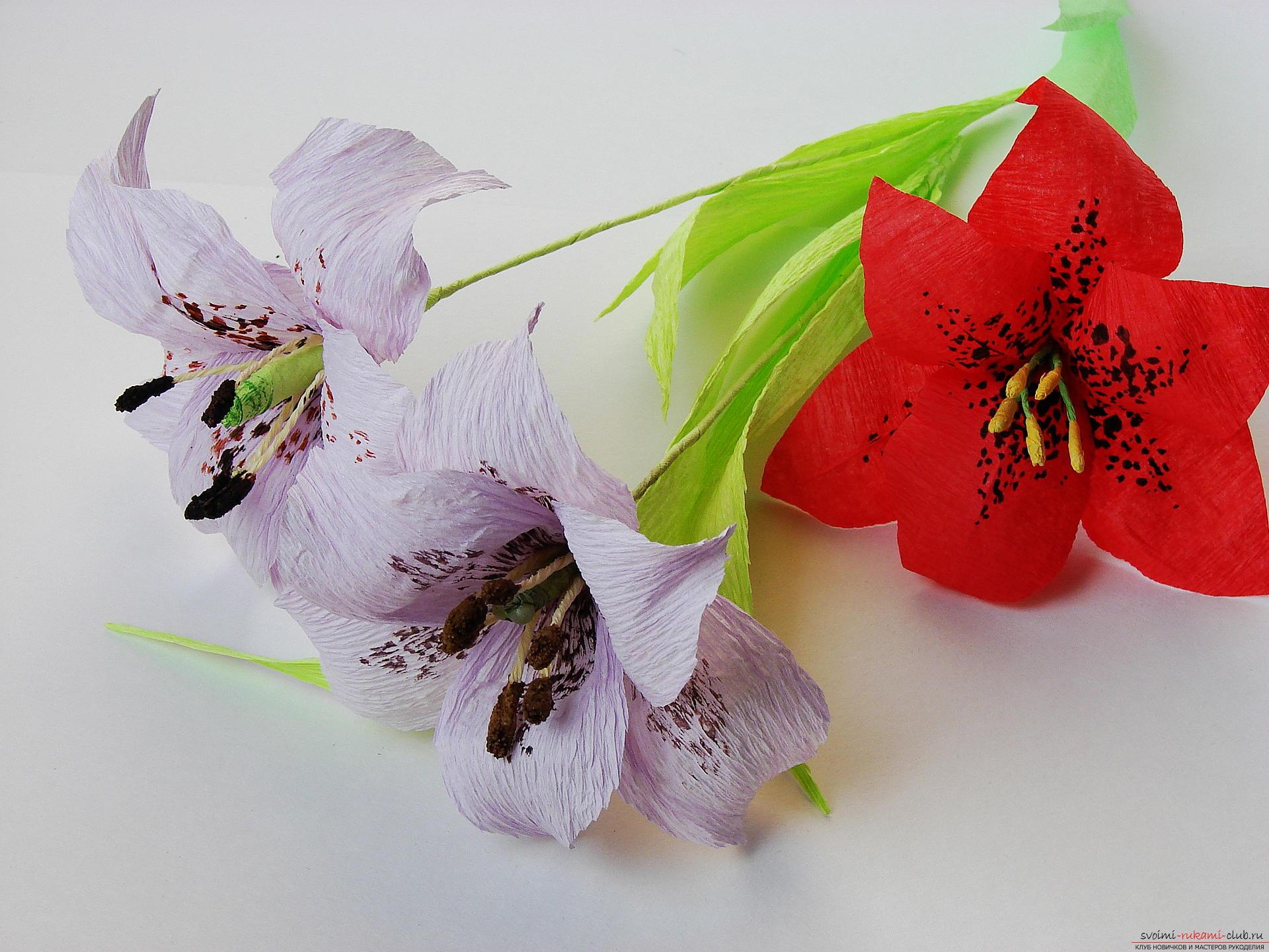 Как сделать лилию из бумаги гофрированной своими руками 18