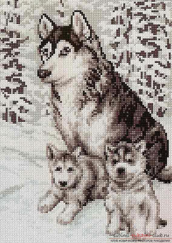 Цветные схемы вышивки крестом фото
