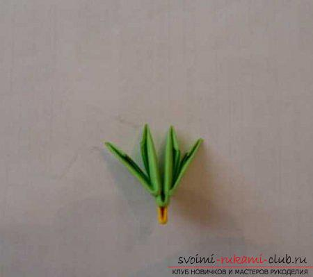 Оригами павлина своими руками: схема и описание. Фото №3