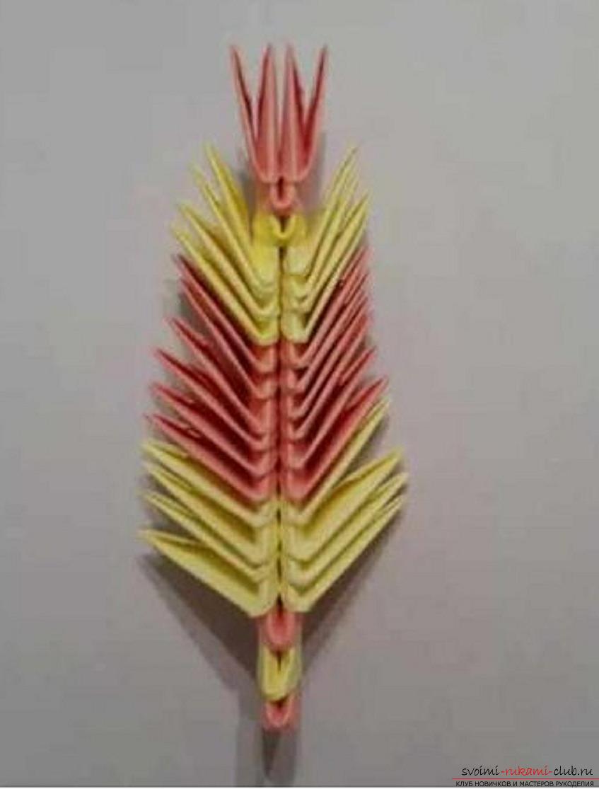 модульное оригами павлин. Фото №33