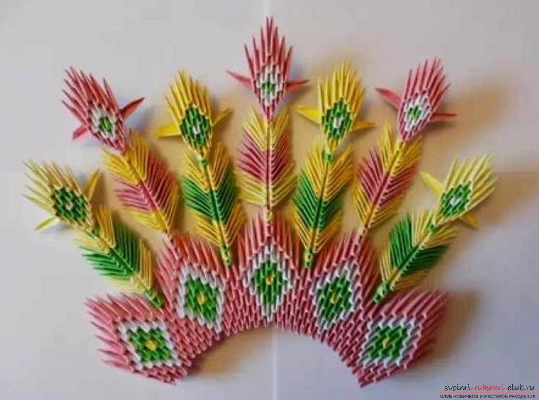 модульное оригами павлин. Фото №36
