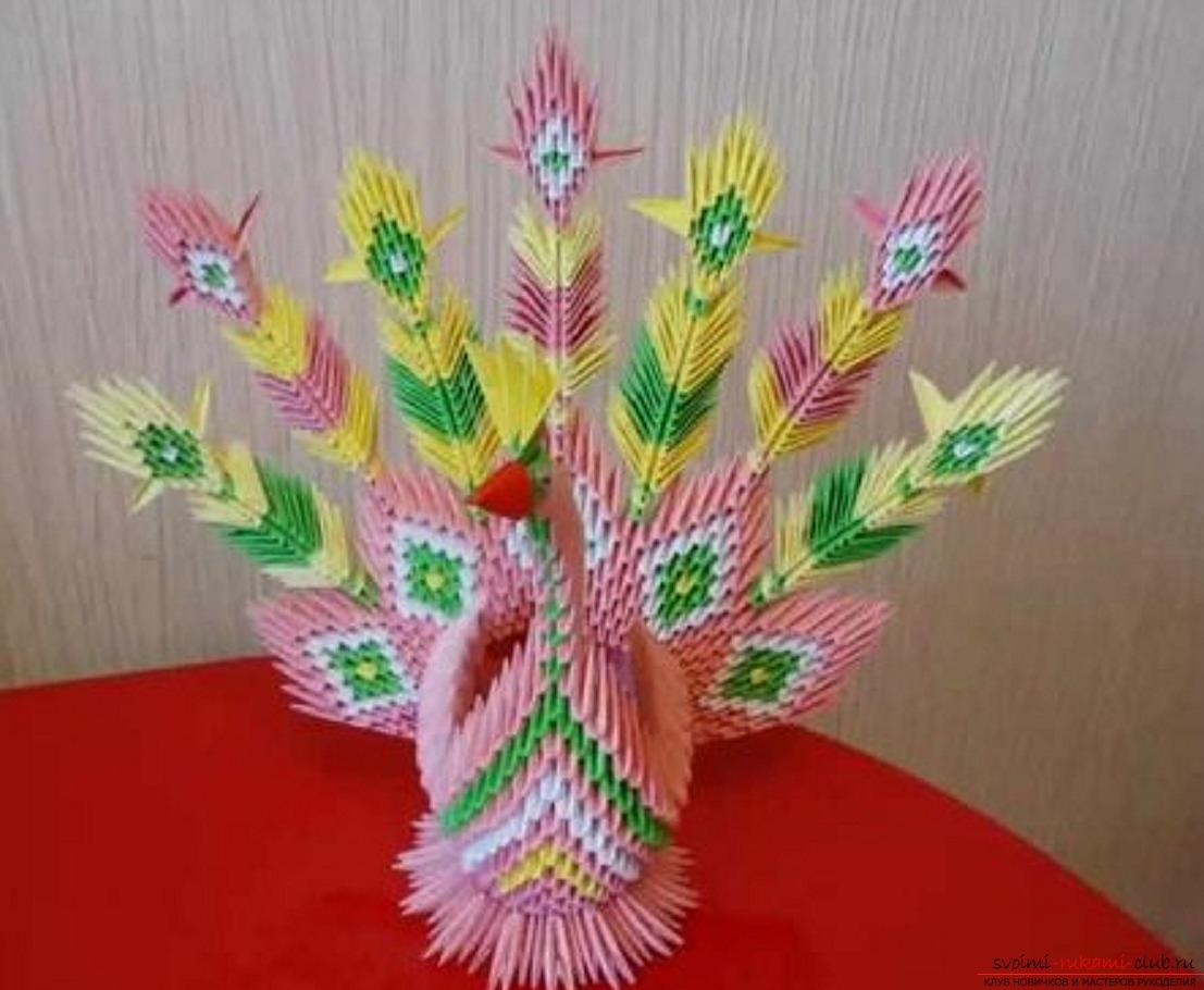 модульное оригами павлин. Фото №40