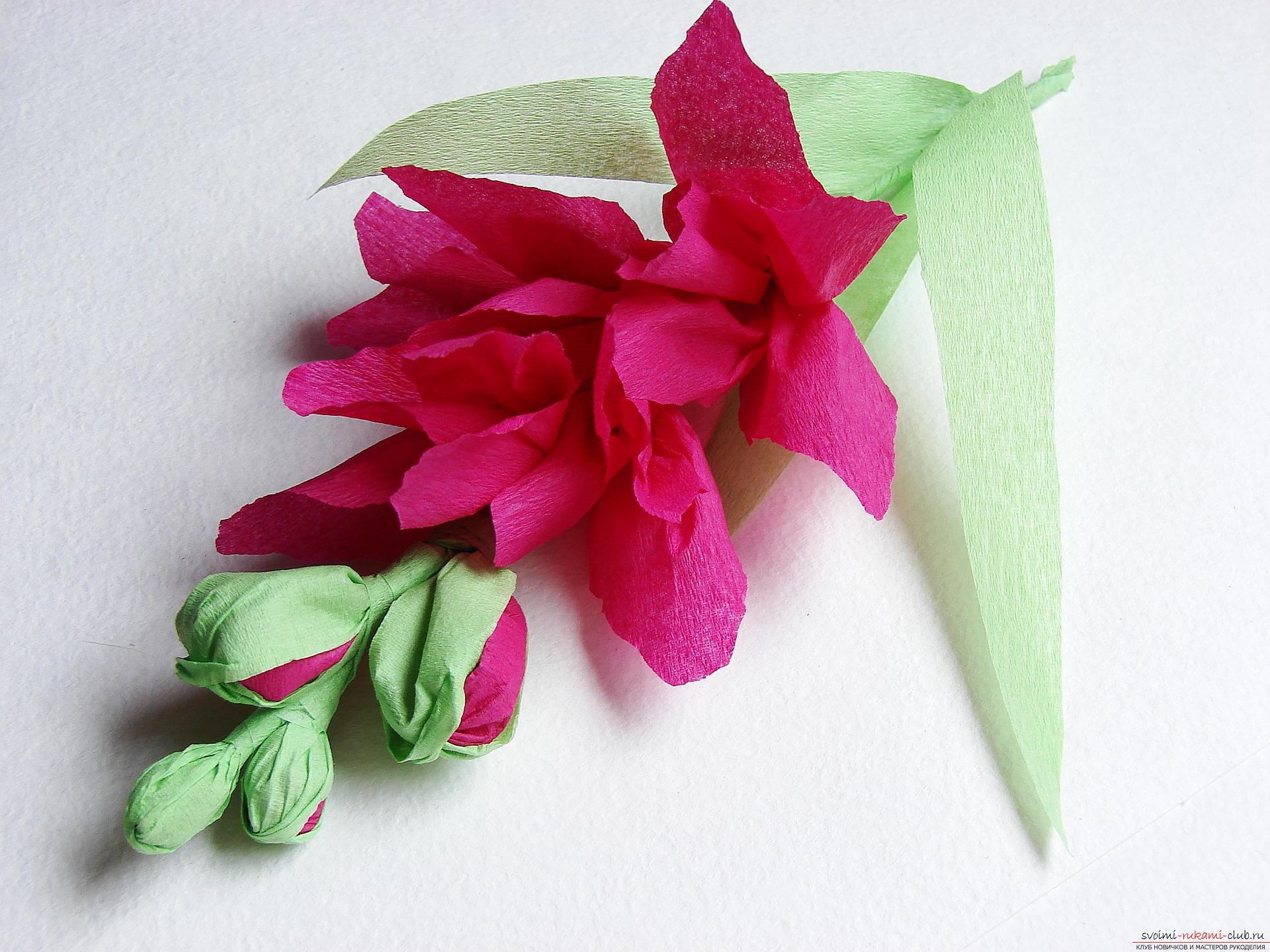 Гладиолус из гофрированной бумаги своими руками пошаговое фото