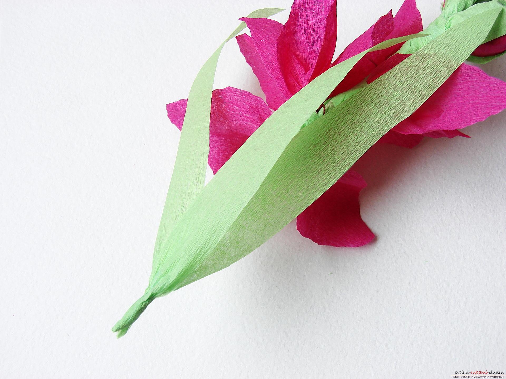 Гладиолусы из бумаги мастер класс с пошаговым фото