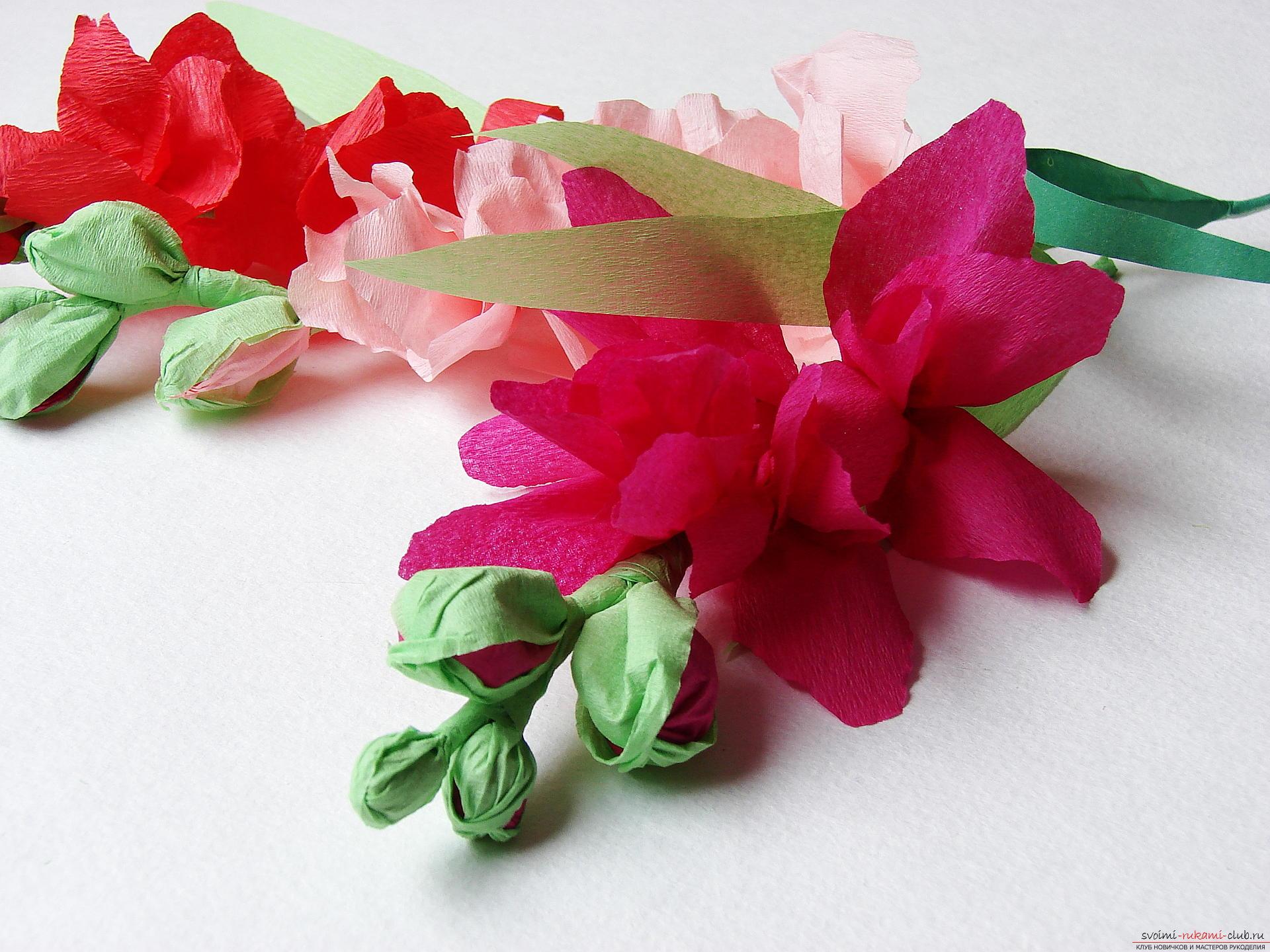 Этот мастер-класс научит как сделать цветы гладиолусы из бумаги своими руками.. Фото №31