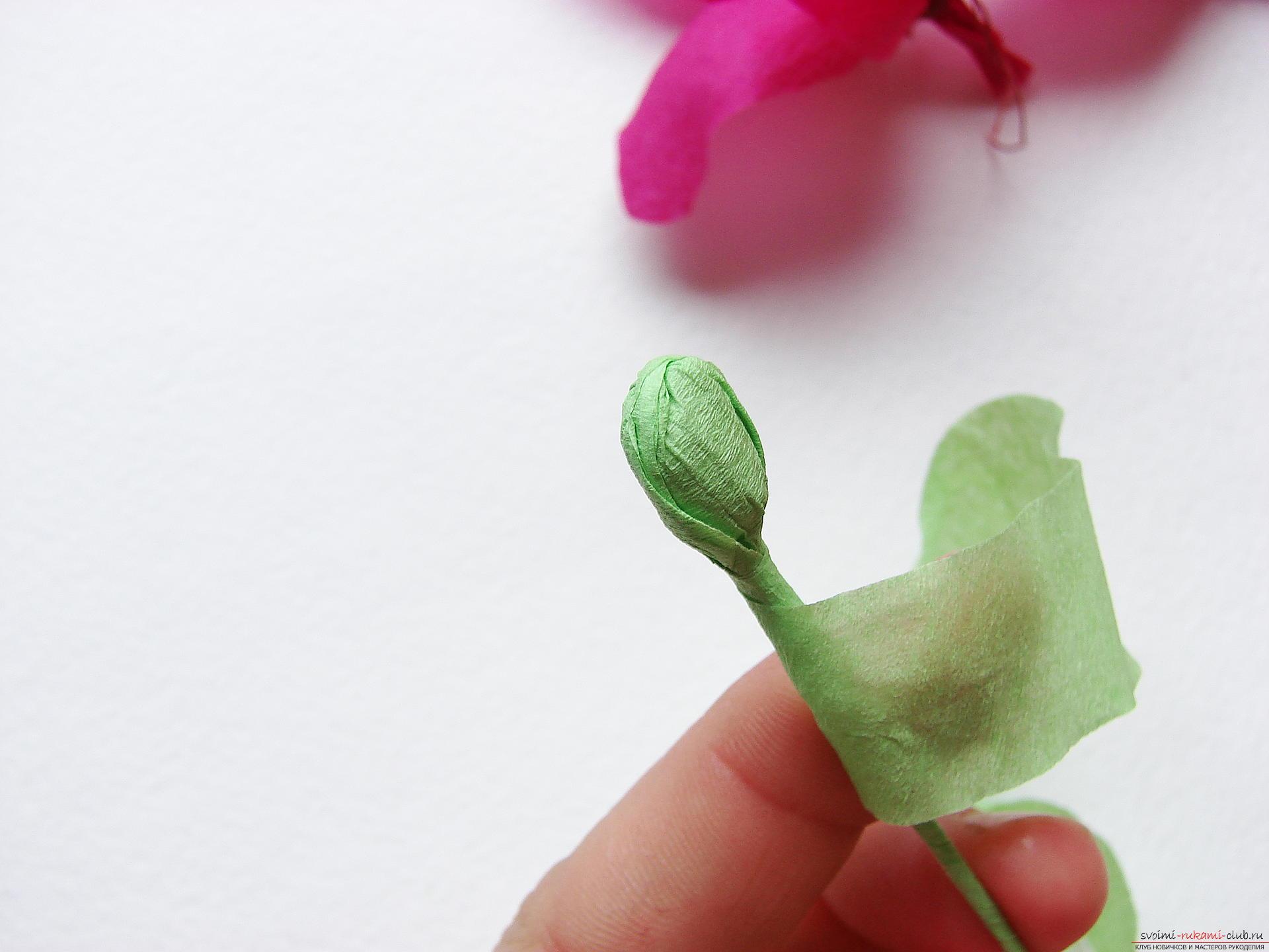 Этот мастер-класс научит как сделать цветы гладиолусы из бумаги своими руками.. Фото №23