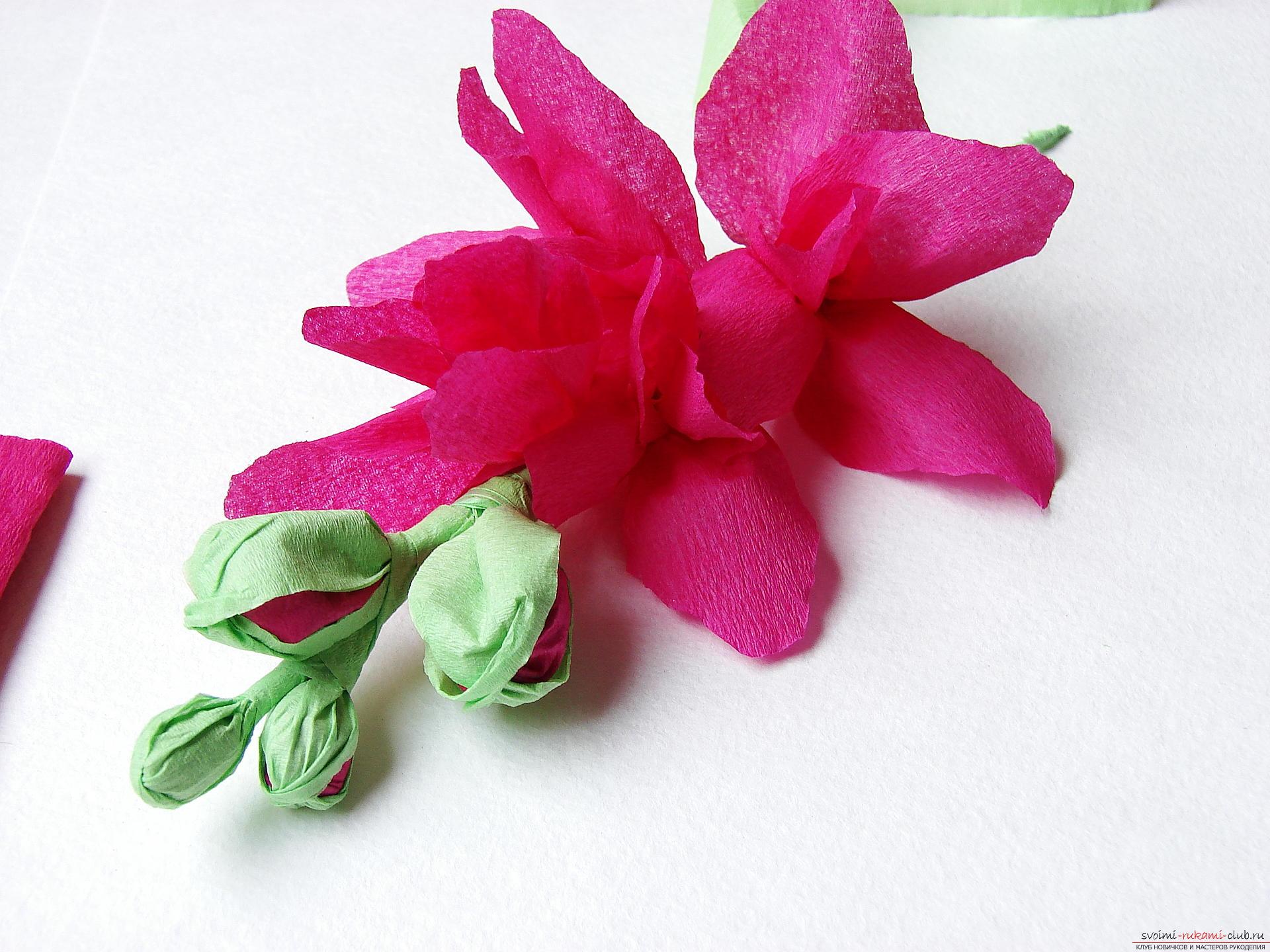 Этот мастер-класс научит как сделать цветы гладиолусы из бумаги своими руками.. Фото №25