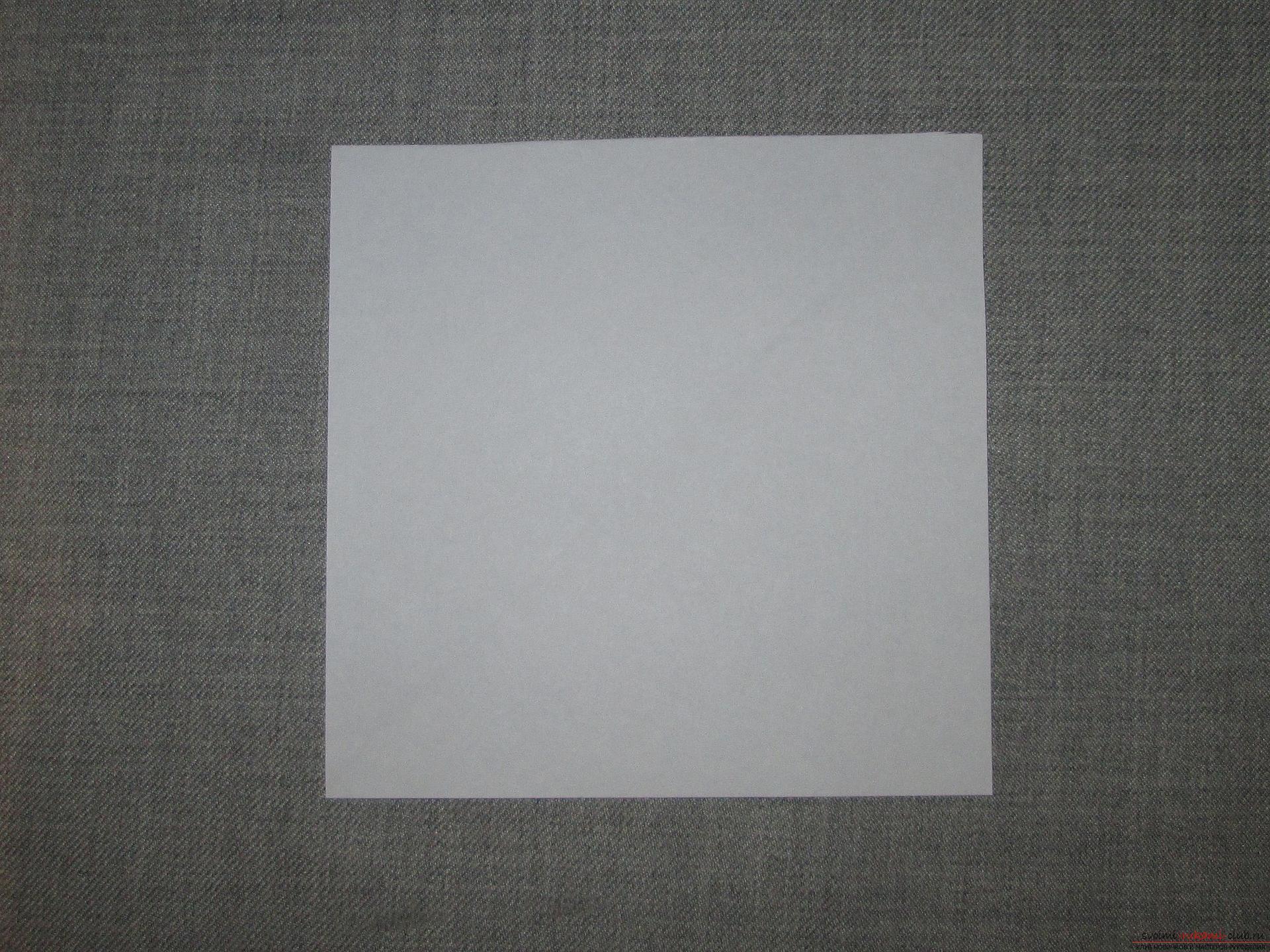 голубь бумага схема