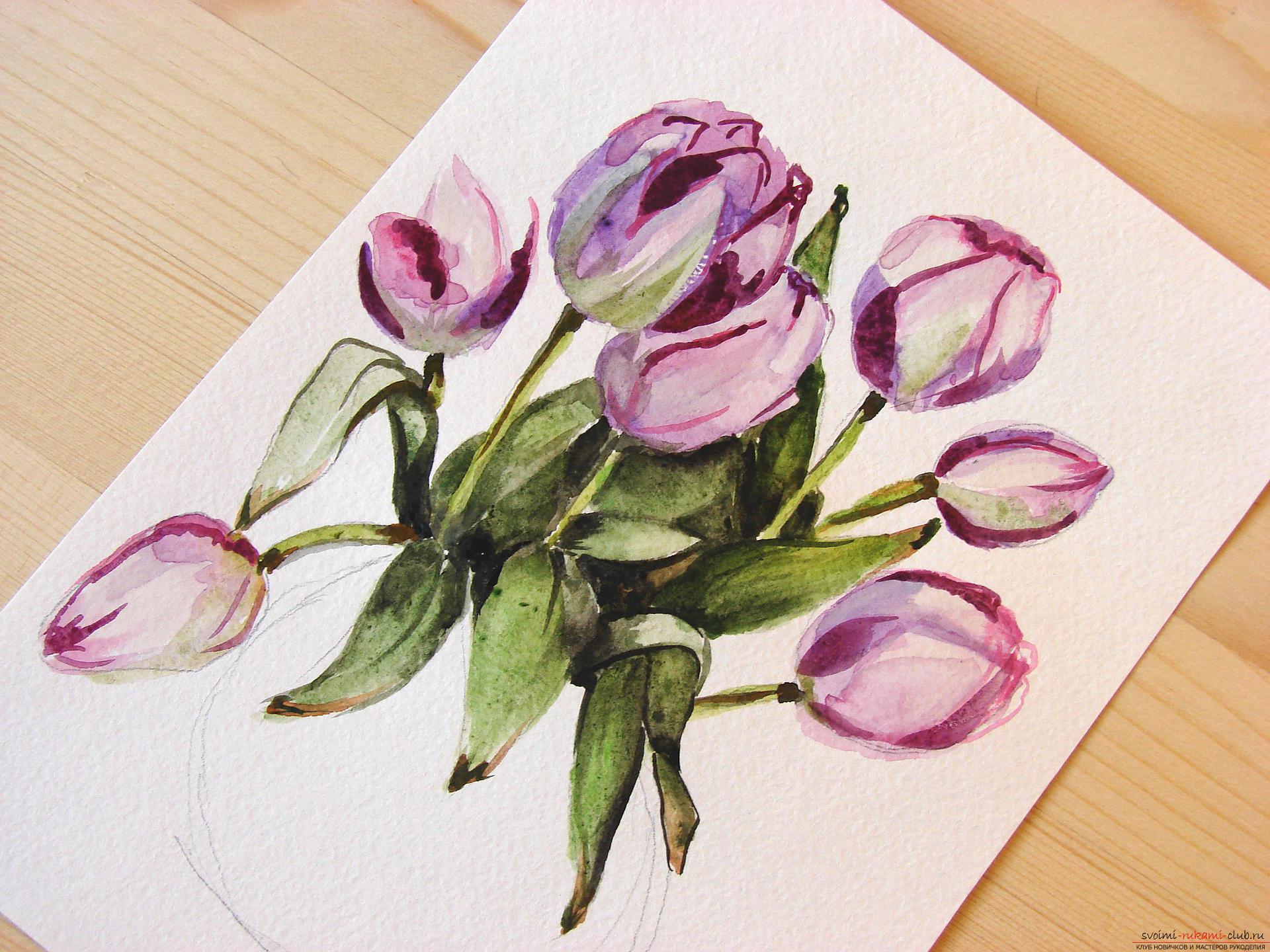 Мастер-класс по рисованию с фото научит как нарисовать цветы, подробно описав как рисуются тюльпаны поэтапно.. Фото №19
