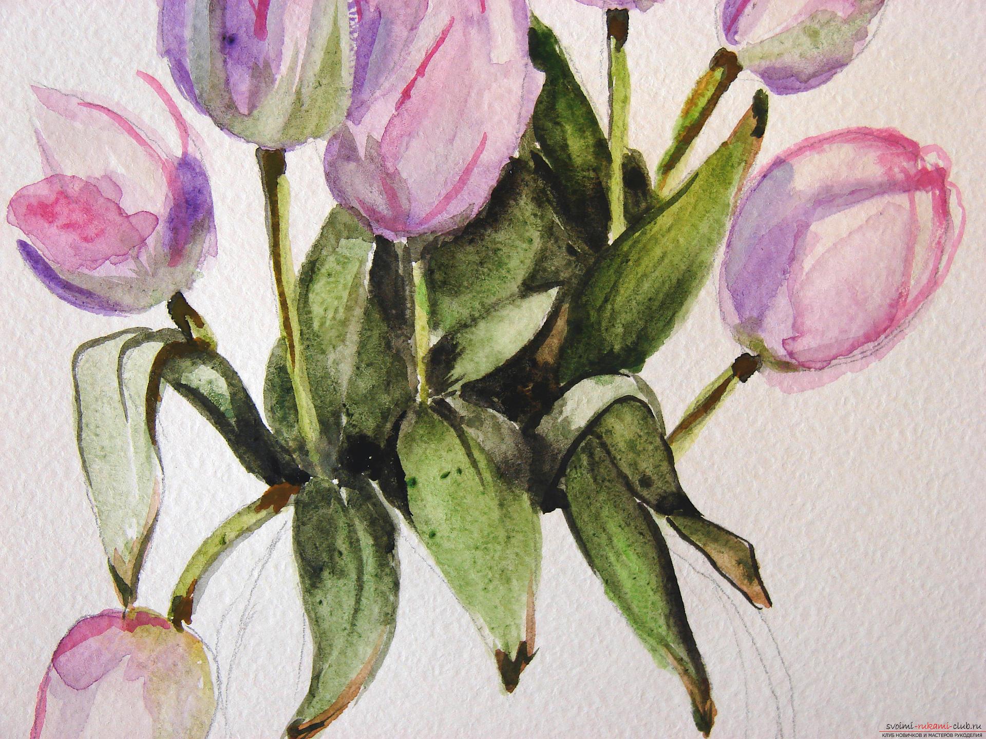 Мастер-класс по рисованию с фото научит как нарисовать цветы, подробно описав как рисуются тюльпаны поэтапно.. Фото №16