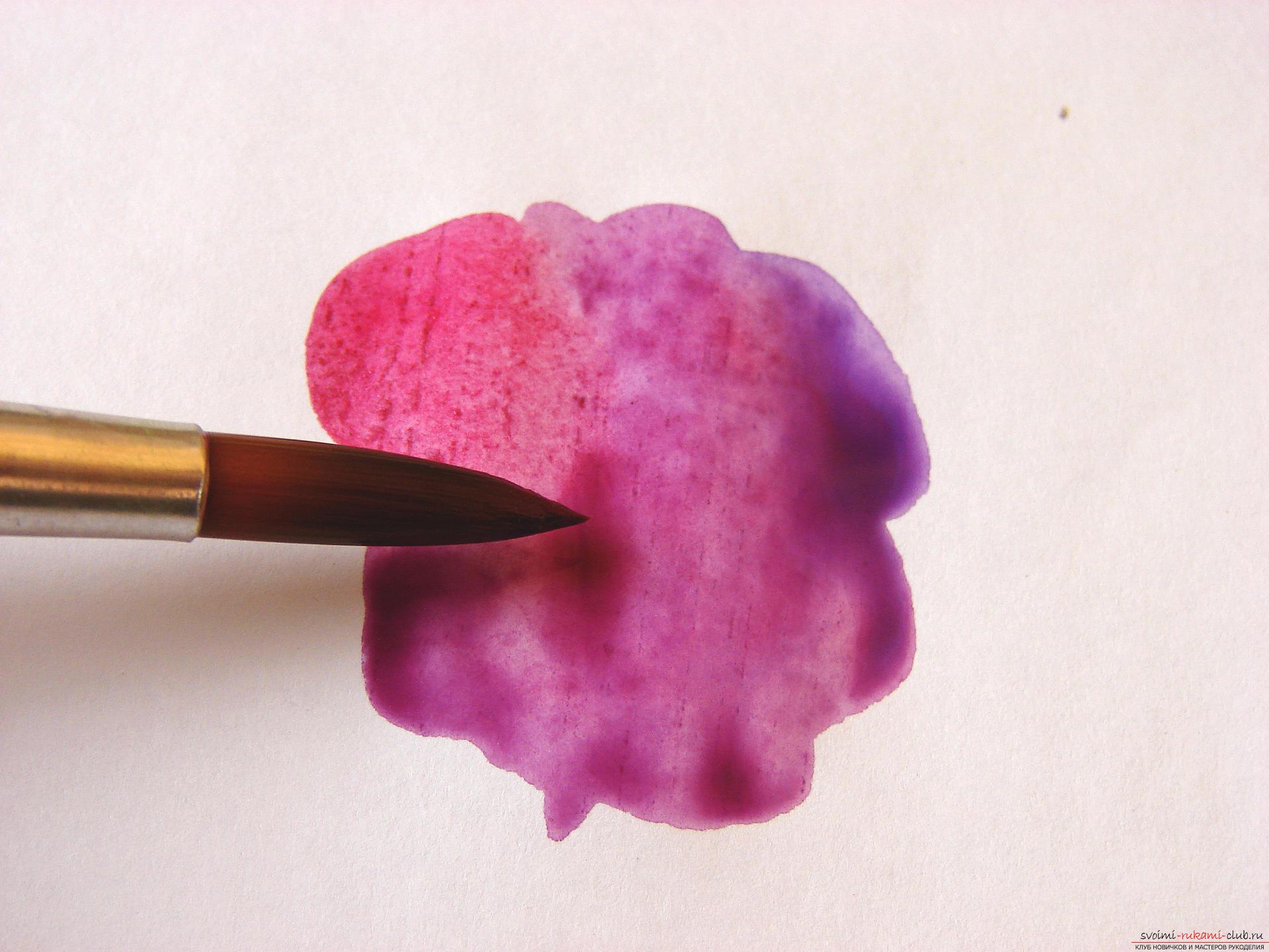 Мастер-класс по рисованию с фото научит как нарисовать цветы, подробно описав как рисуются тюльпаны поэтапно.. Фото №6